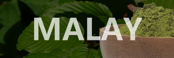 Malay Kratom